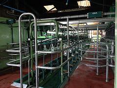 Laigh Castleton Farm