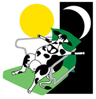 The Agroserve Clinibed cow