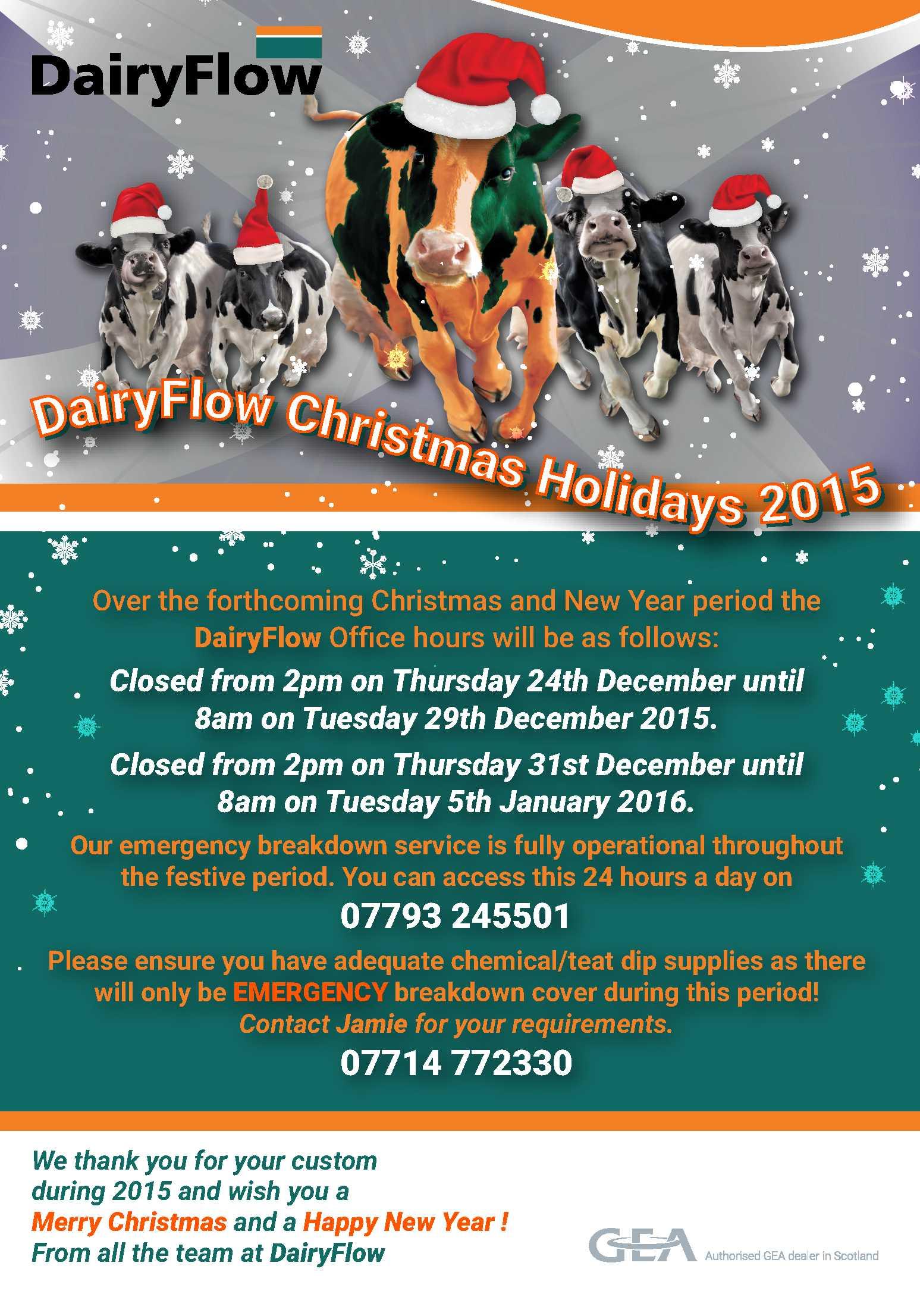 DairyFlow Xmas Flyer (DAi11-15FLY)